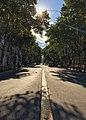 Avenida De Mayo Arbolada (243482301).jpeg