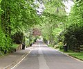 Avenue Road, Fleet - geograph.org.uk - 795562.jpg