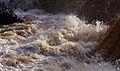 Aysgarth Falls MMB 70.jpg