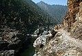 Backpacking Rogue River trail (37048449171).jpg