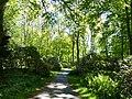 Bad Sassendorf – Kurpark - Rhododendronpark am 6. Mai 2016 - panoramio - Edgar El (2).jpg