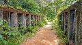 Bagne des Annamites, Montsinéry-Tonnégrande, Guyane Française.jpg