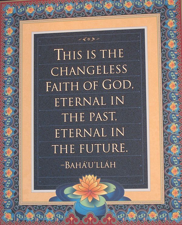 Essays and notes on babi and baha history