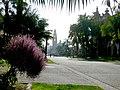 Balboa Park - panoramio - SCOTT CAMERON (1).jpg