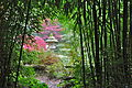 Bambous et lanterne du jardin du soleil levant.JPG