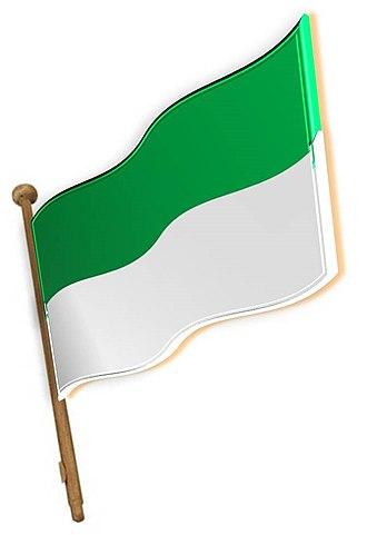 Rurrenabaque - Image: Bandera de Rurrenabaque