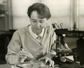 Barbara McClintock (1902-1992) shown in her laboratory in 1947.png