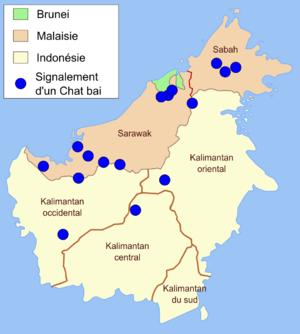 Bay cat - Image: Bay cat distribution map