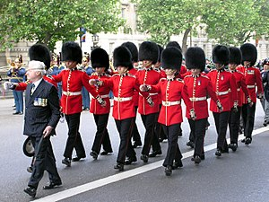 Foot Guards - Foot Guards of the Irish Guards, wearing bearskins, march to the Cenotaph on 12 June 2005 for a service of remembrance for British troops.
