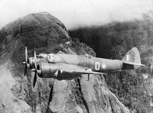 History of the Royal Australian Air Force - An Australian Beaufighter flying over the Owen Stanley Range in New Guinea in 1942