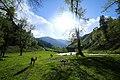 Beauty of Kashmir Pakistan.jpg