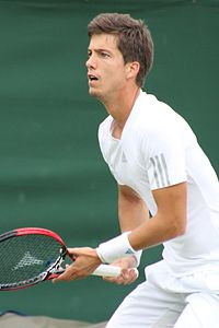 Image illustrative de l'article Aljaž Bedene