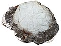 Beryl - hydromoscovite - feldspar.jpg