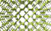 Beryllium-hydride-3D-balls