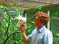 Besucher Vogelpark Olching.JPG