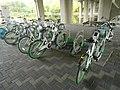 Bicycle-sharing station at Hangang bikeway 6.jpg
