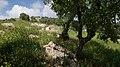 Bierain Sub-District, Jordan - panoramio (17).jpg
