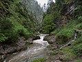 Biosphärenregion Berchtesgadener Land Weißbachklamm Juni 2017 2.jpg