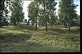 Björkö-Birka - KMB - 16000300020443.jpg