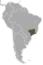 Black-fronted Titi area.png