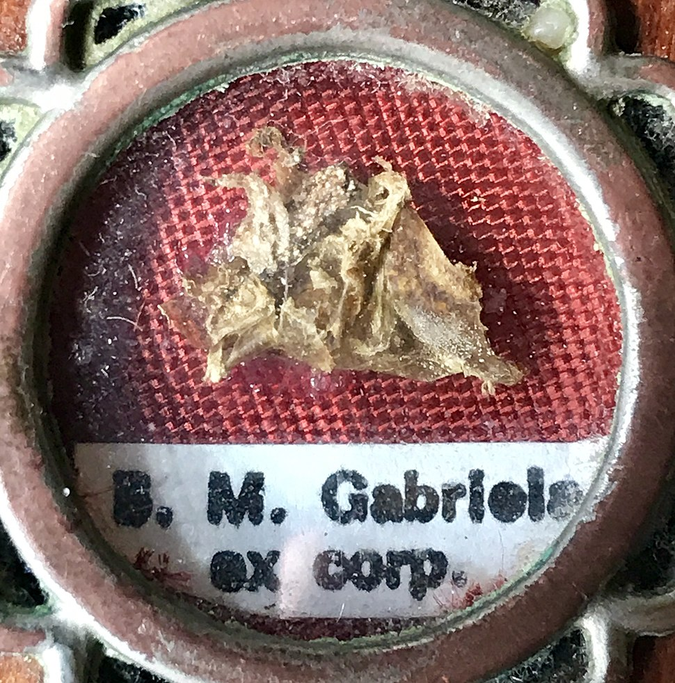 Blessed Maria Gabriela first class relic ex corp