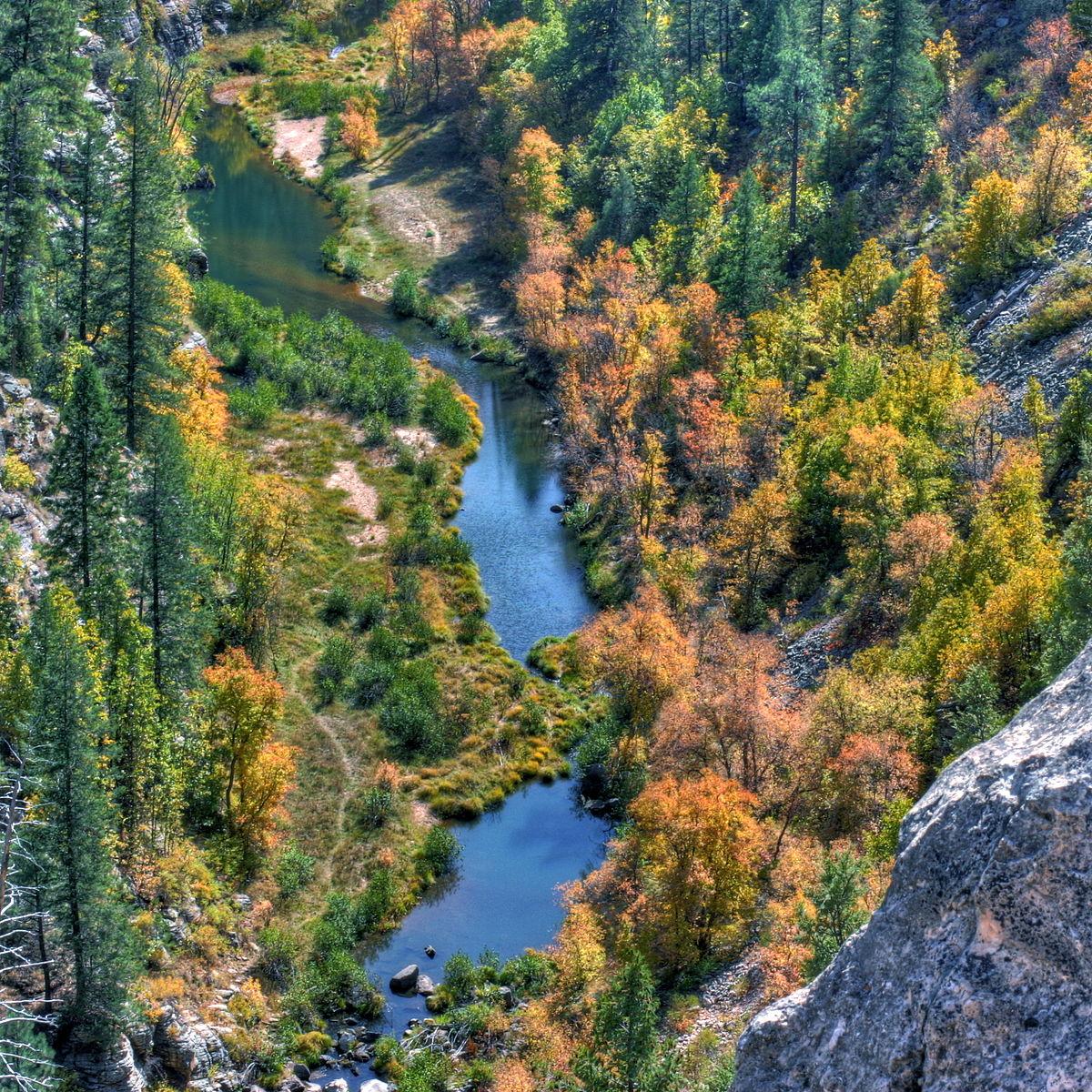 Blue ridge reservoir wikipedia for Camping and fishing in arizona