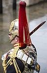 Blues and Royals Honour Guard MOD 45162447.jpg