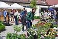 Blumenmarkt - Wiesenburg (Wiesenburg Flower Market) - geo.hlipp.de - 36415.jpg