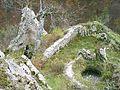 Bobovac - 60 metru hluboka studna na nadvori.jpg
