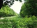 Bois de Vincennes printemps 2009 - 001.JPG