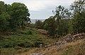 Bornholm - Skovparti - woodland scene - panoramio.jpg