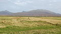 Bornish machair - geograph.org.uk - 242655.jpg