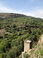 Botanical Garden & Narikala, Tbilisi.jpg