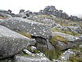 Boulder field, on Rough Tor - geograph.org.uk - 1005916.jpg