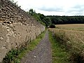 Boundary Wall of Walton Park - geograph.org.uk - 492090.jpg