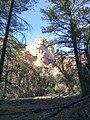 Boynton Canyon Trail, Sedona, Arizona - panoramio (51).jpg