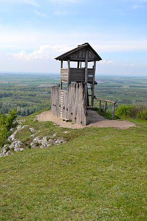 Braunsberg (hill) - Palisade on Braunsberg hill.