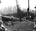 Bridge construction crew, Grays Harbor County, Washington, probably between 1890 and 1900 (WASTATE 399).jpeg