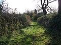 Bridleway, Broadwell - geograph.org.uk - 1602976.jpg