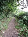 Bridleway near Marlow Bottom - geograph.org.uk - 946049.jpg