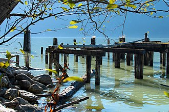 Britannia Beach - Britannia Beach pier debris in polluted waters of Howe Sound. The surviving piles of the Union Steamship dock.
