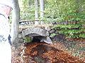 Bro i Hyde skov 2.JPG