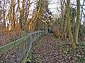 Broad Green Wood, off Bayford Lane, Hertfordshire - geograph.org.uk - 115229.jpg