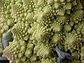 Broccoli DSCN4573.jpg