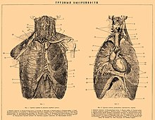 Brockhaus and Efron Encyclopedic Dictionary b18 786-0.jpg