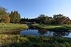 Brooklyn Botanic Garden New York November 2016 001.jpg
