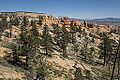 Bryce National Park with Backroads (15385281482).jpg