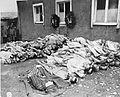 Buchenwald Corpses 74608.jpg