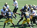 Buffaloes on offense at Colorado at Cal 2010-09-11 24.JPG
