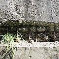 Bunkerroest.jpg